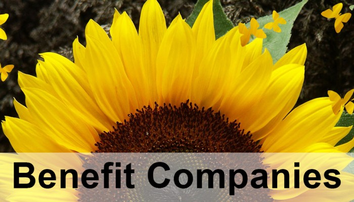 benefitcompanies01